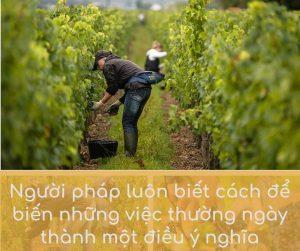 Nguoi Phap luon biet cach bien nhung viec thuong ngay thanh mot dieu y nghia